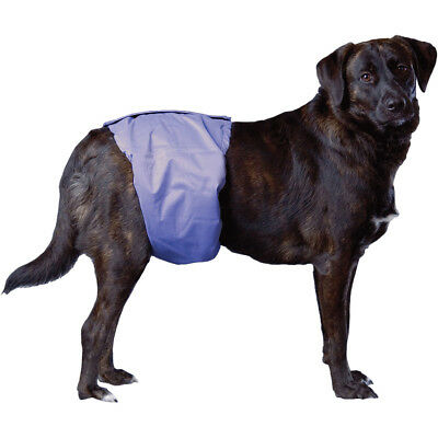 """PoochPants Reusable Male Wrap X Large 29"""" To 35""""  PPMXL01"""