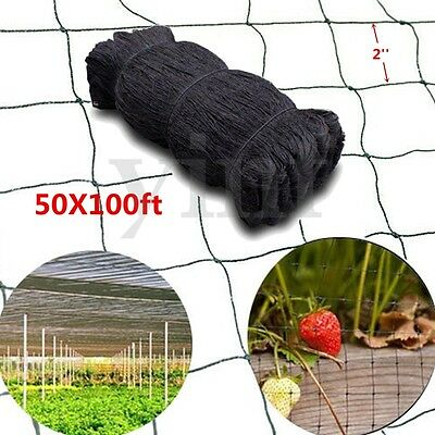 "100X50ft Anti Bird Baseball Poultry Soccer Game Fish Netting 2"" Mesh Holes Plant"