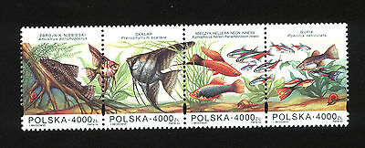 POLISH STAMPS - MNH Aquarium fishes - FISH - POLAND 1994