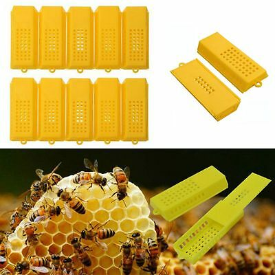 10x Professional Queen Bee Butler Cage Catcher Trap Case Plastic Beekeeping Tool