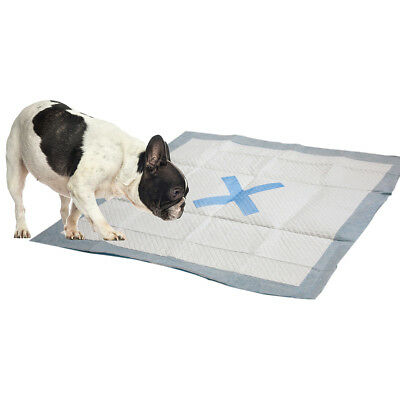 "X Marks The Spot Puppy Pads 22""X22"" 30/Pkg  50027"