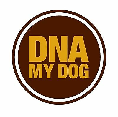 DNA MY Dog - Canine Breed Identification Test Kit - At-Home Cheek Swab Kit - ...