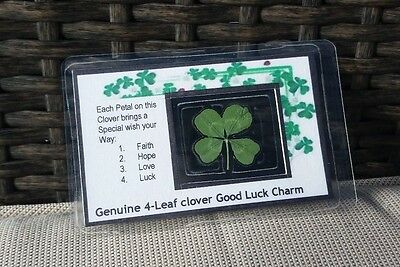 Real 4 four leaf clover, purse/wallet card. Wedding favour. Buy 2 get 1 free