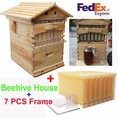 Free Shipping 7 PCS Bee Flow Auto Honey Hive Beekeeping Frames + Beehive Wooden