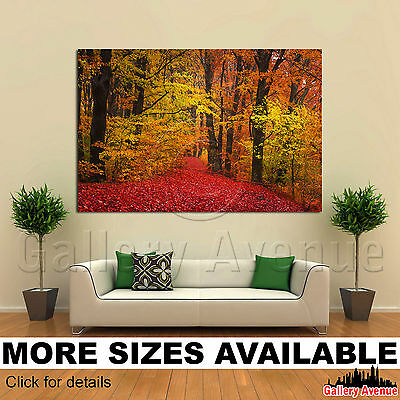 WALL ART CANVAS Picture Print - Autumn Forest Red Orange Trees 3.2 ...
