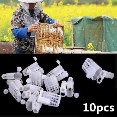 10x Beekeeping Rearing Queen Bee Hair Roller Plastic Cages Beekeeper Tools Kit