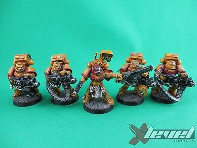 Devastator Squad – Imperial Fists [Heavy Bolter] [x5] Space Marines [Warhamme...