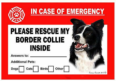 Border Collie Pet Savers Emergency Rescue Window Cling Sticker