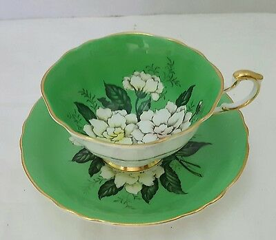 Paragon Cup And Saucer White Gardenias On A Green Background