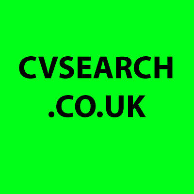 Domain Name for Job Site Recruitment Company CV Search