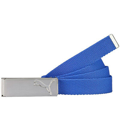 Puma Ladies Path Web Belt - Dazzling Blue