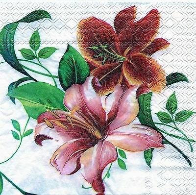 Napkins paper 1x20x33x33 chic table,party,roses,decoupage,art design, creativity