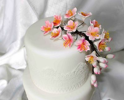 CHERRY BLOSSOM Sugar Flower, Medium, Cake Topper, Wedding, Birthday, decoration