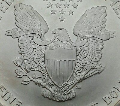 USA 0.9993 Silver 1 Dollar 2005. KM273. Walking Liberty. One Crown coin. MS. UNC