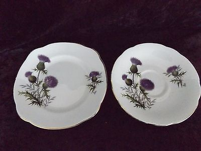 Duchess Purple Thistle Flowers Fine Bone China Saucer and Side Plate