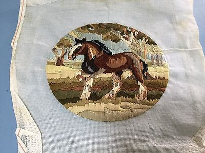 Long Stitch - Horse - Completed