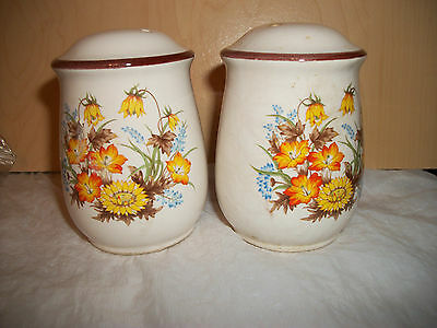 Vintage White Salt & Pepper Shakers with Brown and Yellow Floral Design - Japan