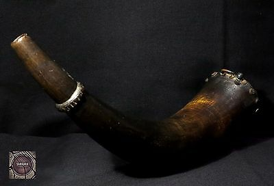Antique Zulu Powder Horn - 19th century - South Africa - Rare Item