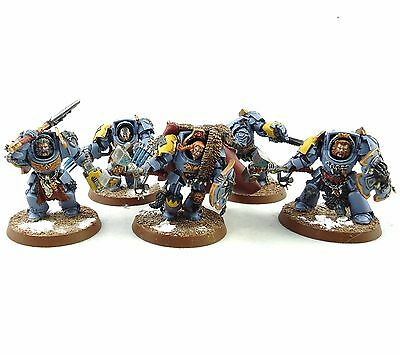 Warhammer 40K Army Space Marine Space Wolves Terminator Squad Painted