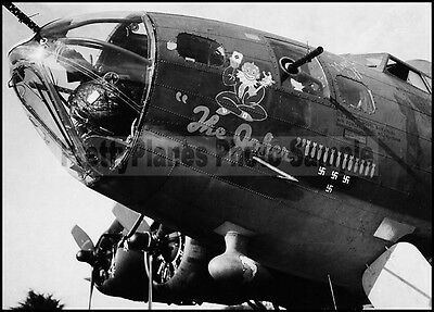 WW2 B-17 Flying Fortress 532nd BS 381st BG England 1940's 5x7 Aircraft Photos
