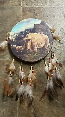 Large Native American inspired white buffalo dream catcher drum South Dakota