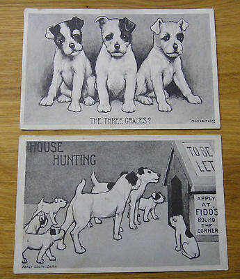 POSTCARDS x2 OF DOGS BY PERCY COLIN CARR – BORDER COLLIES??