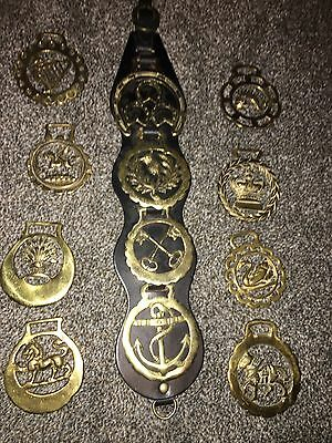 Vintage Lot Of 12 Brass And Leather Horse Medallions Equestrian England
