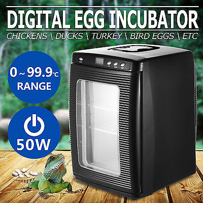 Reptile Egg Incubator Bird Brooder Led Indicator12Volts Dc 220~240V Ac