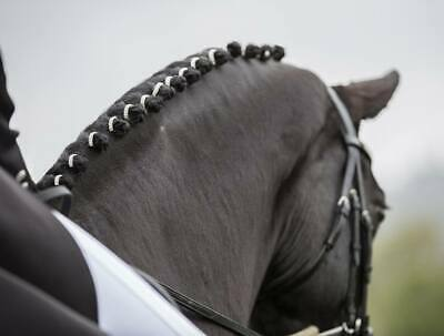 Equetech Crystal Plaiting Bands