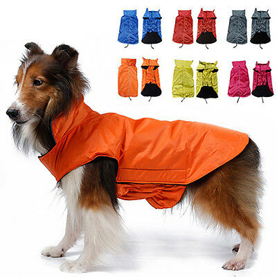 Pet Coat Dog Jacket Winter Clothes Cat Waterproof Clothing Apparel  Delightful