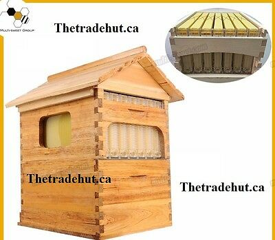 Auto flow bee hive 7 frame in 1 hive