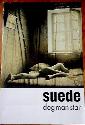 Suede Dog Man Star Poster