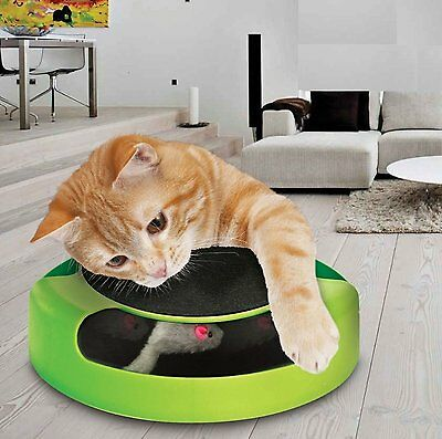 Motion Kitten Cat Toy Catch The Mouse Chase Interactive Cat Training Scratch Pad