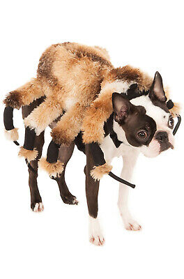 Brand New Creepy Insect Spider Harness Pet Dog Costume