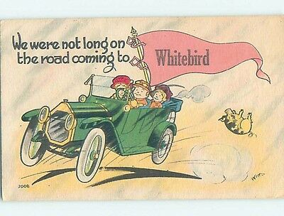 Divided-Back COMIC POSTCARD Town Of White Bird Idaho ID HM4785