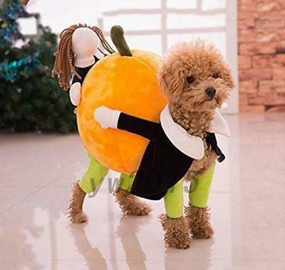 Cute Pet Dog Costume Carrying Pumpkin Puppy Apparel Jacket Coat Warm Clothing