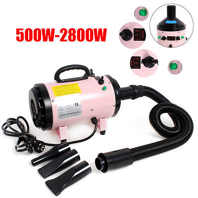 2800W Lowest Noise Pet Hairdryer Grooming Dog Cat Hair Dryer Blaster Blower New