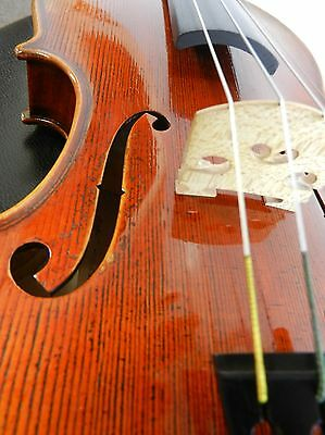 Beautiful Antique Varnish,4/4 Full Size Violin, Dominant Strings, Used