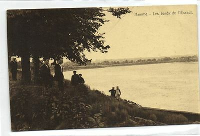 1 postcard Belgium Hamme bords de l'escaut