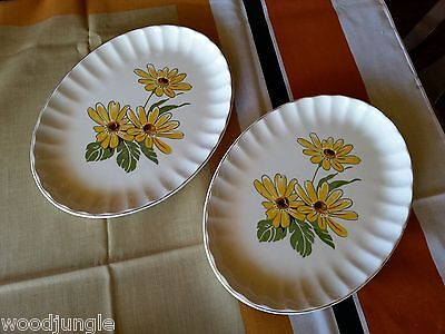 2 RARE Antique Art Deco W.S. GEORGE  YELLOW DAISIES OVAL PLATTERS Vintage
