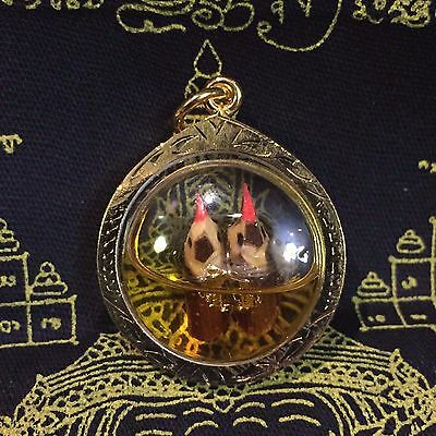 Rare Salika Bird Oil Thai Buddha Amulet Pendant Magic Charm Love Luck Rich Money