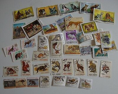 Small Collection 40 Worldwide Thematic Stamps - Zoological, Used,