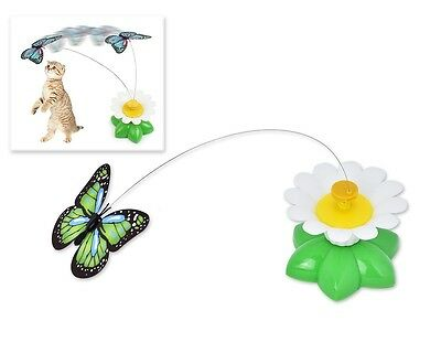 Butterfly Cat Toy Kitten Interactive Activity Hunt Play Agility Teaser Training