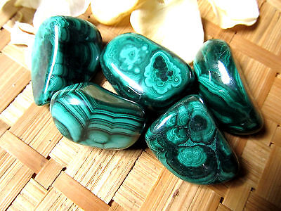 240-Galet de malachite-environ 3cms-Chakra-Douleurs-Pollutions