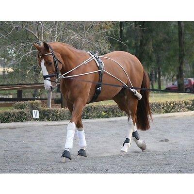 NEW Zilco Lunge Training System, Pessoa, Training Aid