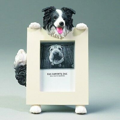 Border Collie Dog Picture Photo Frame