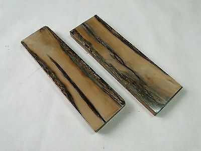 Genuine (40000-10000 y.a) Fossil Stabilized scales for knife handle