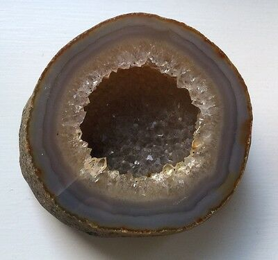 Fathers Day Gift 🎁 Crystal Rock Fossil Unique Rare  Item