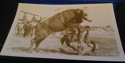 3 RP Postcards calgary stampede photo J Rosettis unposted about 1944