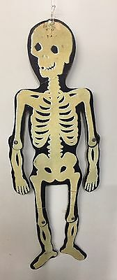Vintage 1940's Halloween Skeleton Glow In Dark Articulated Decoration Scarce